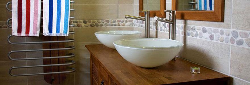 Opter pour un meuble vasque design